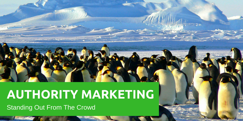 Authority Marketing - Becoming the Leader